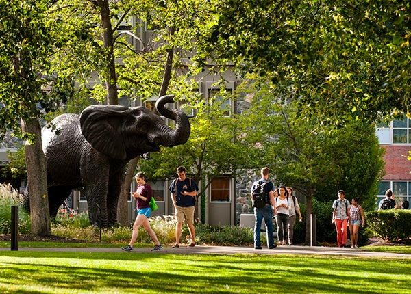 Tufts Jumbo statue on campus in Medford