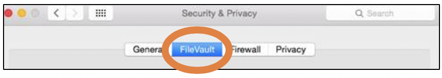 Firevault is the second tab