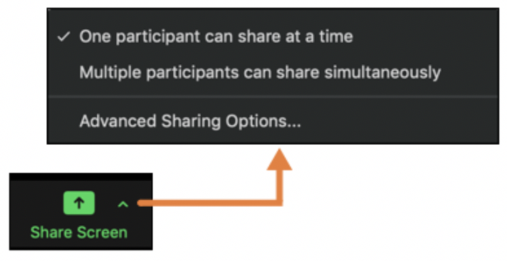 Zoom sharing options